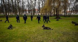 Policjanci szkolili psy w Ogrodach Branickich