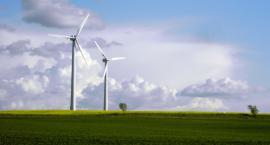 Zielona energia w coraz większym rozkwicie