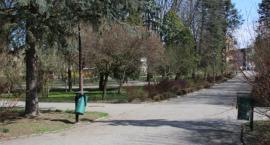 Łomżyński park Jakuba Wagi przejdzie renowację