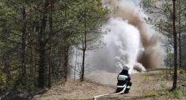 Paliła się Puszcza Białowieska. Pożar ugaszono