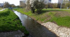 Operacja Czysta Rzeka 2019 w Białymstoku