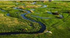 Wolontariusze spotkają się w Janowie, żeby posprzątać rzekę