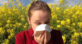 Lekarze są zdania, że dzieci cierpiące na alergię, nie powinny być trzymane pod kloszem