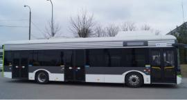 Czy komunikacja miejska w Białymstoku doczeka się elektrycznych autobusów?