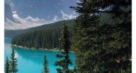 Ciekawi Świata: Z namiotem wśród niedźwiedzi, czyli Kanada i Yellowstone według Pauliny i Maćka Sawi