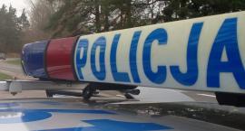 Policjanci zatrzymali trzech podejrzanych o włamanie do hurtowni kwiatów