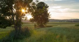 Będzie więcej pieniędzy na ochronę przyrody w województwie podlaskim