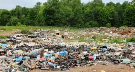 Największe zadłużenie mają firmy recyklingowe