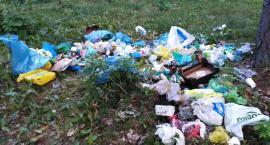 Mandat w wysokości 1 tys. złotych za zaśmiecanie lasu