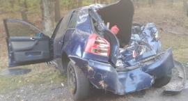 Audi wypadło z drogi i zatrzymało się na drzewie. Ranne dwie osoby