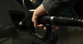 Ceny paliw są niższe niż przed rokiem