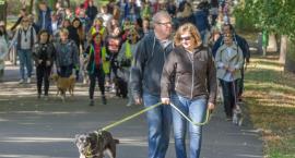 Niedzielna Parada Adopciaków w Parku Planty