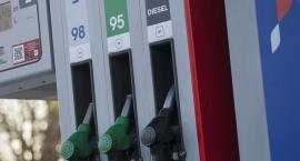 Ropa tanieje, ceny paliw na stacjach bez zmian