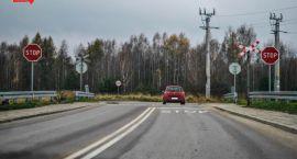 Piknik Ekologiczny w Lesie Turczyńskim