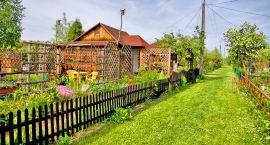 Działkowcom będzie łatwiej przejąć swoje ogrody