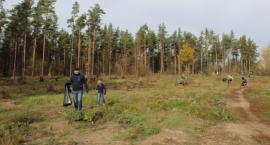 Mieszkańcy Wasilkowa posprzątali sobie las