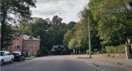 Białowieża wśród najbardziej zalesionych gmin w Polsce