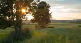 Na terenach wiejskich też trzeba chronić przyrodę