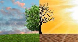 W sprawie globalnego ocieplenia każdy może podjąć działanie