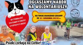 Potrzebni nowi wolontariusze do Schroniska. Innych czeka wiele wydarzeń