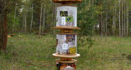 Sobotę spędź na łonie przyrody. Dziś piknik w lesie turczyńskim