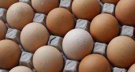 Oszukują na jajkach