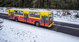 Podróż do Supraśla transportem publicznym. Survivalowcy byliby zachwyceni