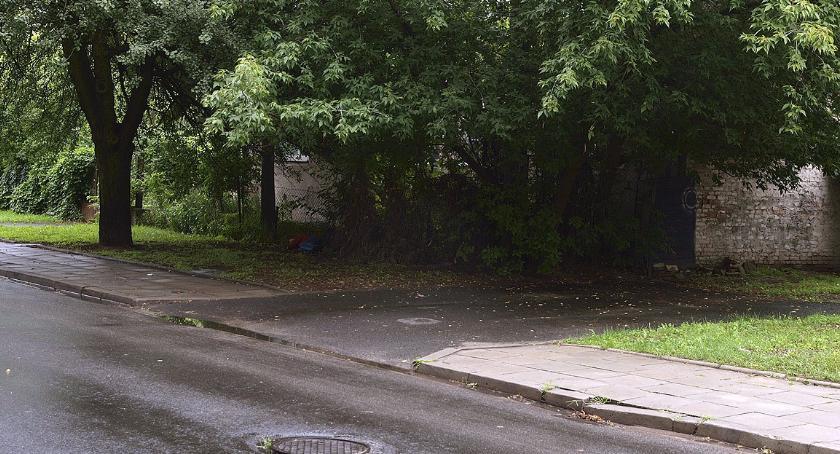 parki i podwórka, Morowe powietrze Targówkiem - zdjęcie, fotografia