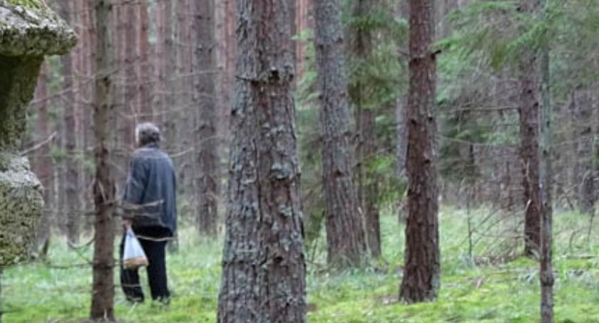 Ludzie Targówka , Powrót wielkiej płyty Ciekawe odkrycie - zdjęcie, fotografia