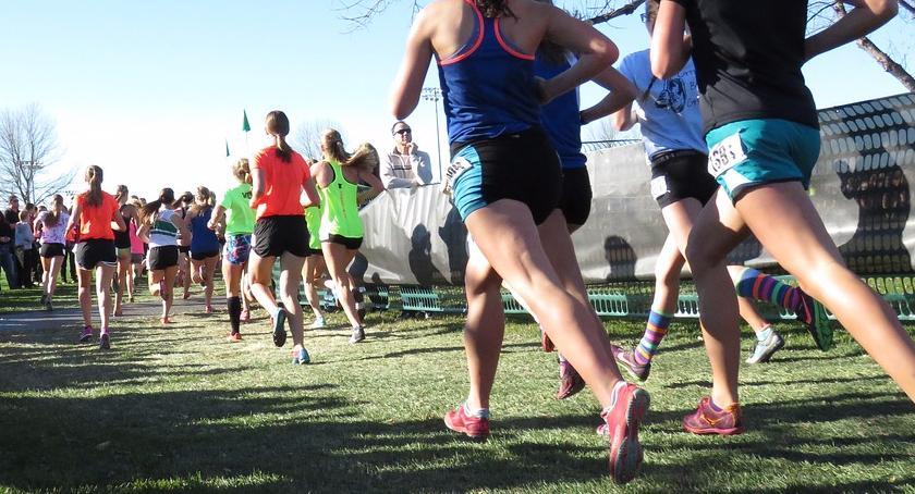 bieganie, Biegi okazji Święta Niepodległości - zdjęcie, fotografia