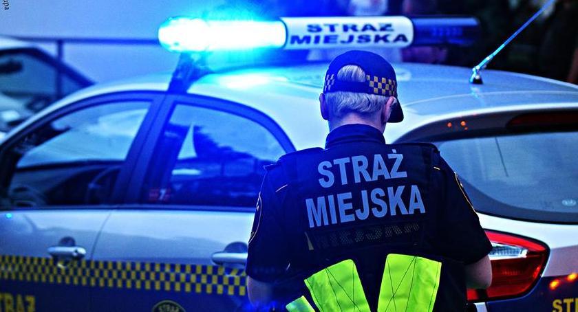 bezpieczeństwo, Złodziej samochodów zatrzymany dzięki straży miejskiej Będą nagrody funkcjonariuszy - zdjęcie, fotografia