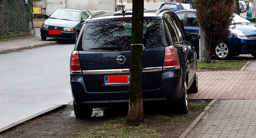 Mistrzowie parkowania , tyłu widać trawy - zdjęcie, fotografia