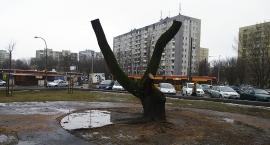 Znak zwycięstwa na Targówku