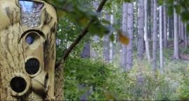 Klembów -  Foto-pułapki w lasach na terenie gminy