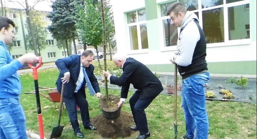 Oświata, drzew lecie Zespołu Szkół Waleriana Łukasińskiego - zdjęcie, fotografia