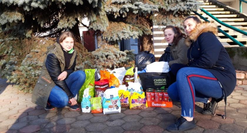 Akcja charytatywna, pomocą zwierząt - zdjęcie, fotografia