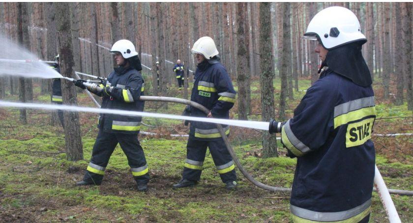 Pożary, Płonęły regionie - zdjęcie, fotografia