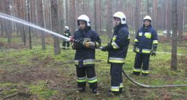 Ponad setka strażaków gasiła pożar lasu