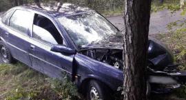 Pijany wjechał w drzewo i skasował auto