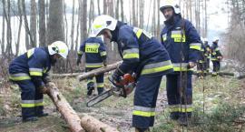 Strażacy ratują w każdych warunkach