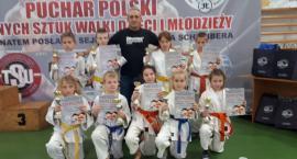 Udany rok karateków z Lipna