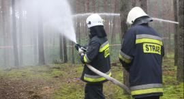 Strażacy z OSP Bobrowniki sami podpalali
