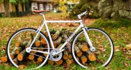 Znakowanie rowerów w gminie Wielgie