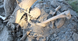 Znaleźli ludzkie szczątki w Mokowie
