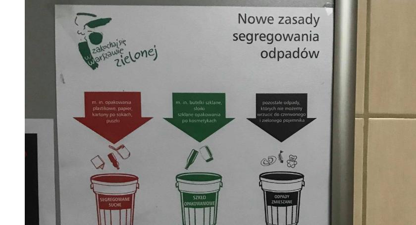 Zieleń, zasady segregowania śmieci - zdjęcie, fotografia