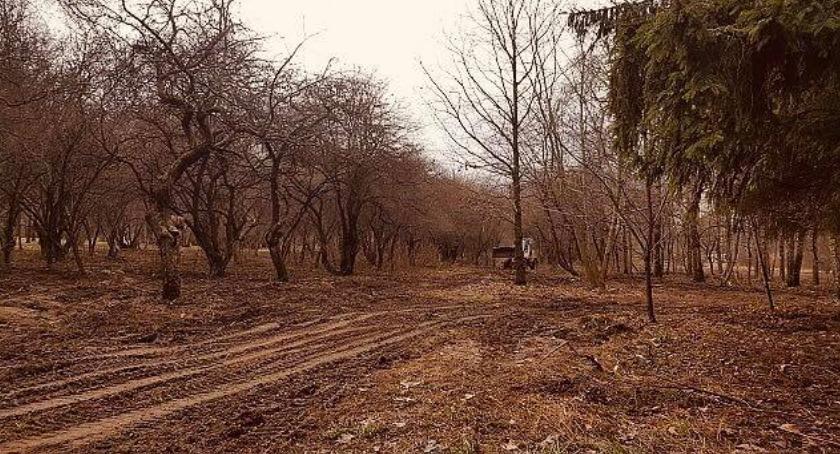 Inwestycje, dalej parkiem Górczewskiej - zdjęcie, fotografia