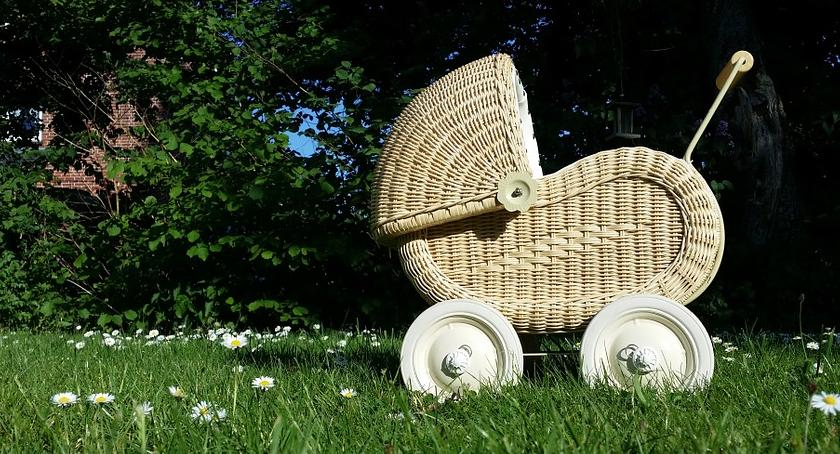 Bezpieczeństwo, Ukradł rowerek dziecięcy wózek - zdjęcie, fotografia