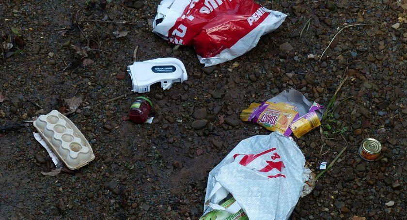 Śmieci porozrzucane w lesie