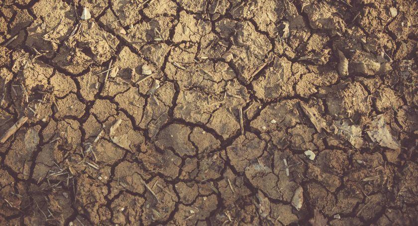 Wyschnięta i spękana ziemia