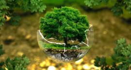 Dzień Ziemi - jak pomóc naszej planecie